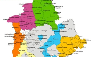 licencia municipios sevilla